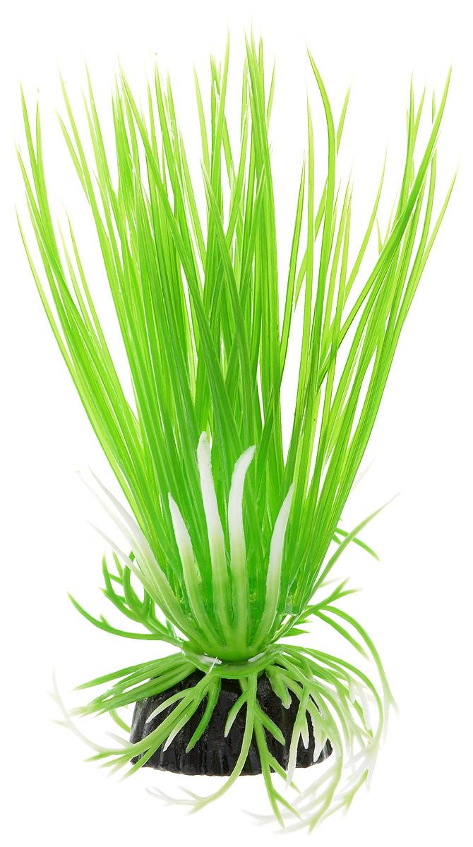Растение для аквариума Barbus Акорус, пластиковое, высота 10 см