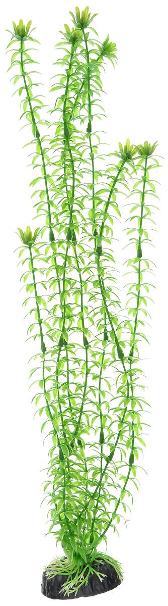 Растение для аквариума Barbus Элодея, пластиковое, высота 50 смPlant 004/50Растение для аквариума Barbus Элодея, выполненное из качественного пластика, станет прекрасным украшением вашего аквариума. Пластиковое растение идеально подходит для дизайна всех видов аквариумов. Оно абсолютно безопасно, нейтрально к водному балансу, устойчиво к истиранию краски, подходит как для пресноводного, так и для морского аквариума. Растение для аквариума Barbus поможет вам смоделировать потрясающий пейзаж на дне вашего аквариума или террариума. Высота растения: 50 см.