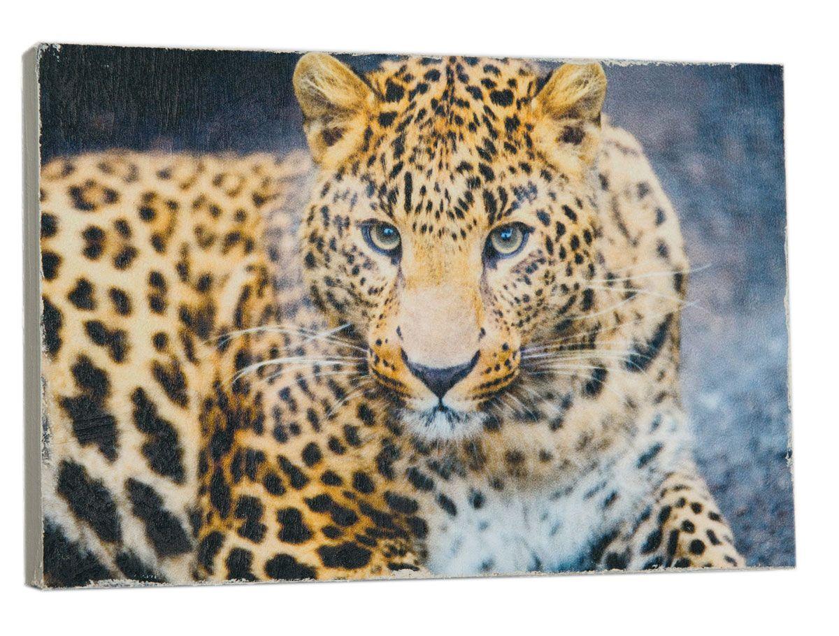 Картина Mister Poster Леопард на охоте, 22 х 14,5 см0100-15-22Картина Mister Poster - это высококачественная репродукция на деревянной раме. Лицевая поверхность имитирует штукатурку или натуральный холст, края окрашены вручную специальным декоративным составом.Современные технологии, уникальное оборудование и оригинальные чернила, используемые при изготовлении, делают постер устойчивым к выцветанию, а также гарантируют стойкость к воздействию негативных внешних факторов. Интерьер дома и офиса, в котором находится человек, в значительной степени влияет на его настроение и работоспособность. Правильное оформление интерьера создает благоприятный психологический климат, улучшает настроение и мотивирует. Добавьте «красок» в ваш интерьер и, возможно, в вашу жизнь.
