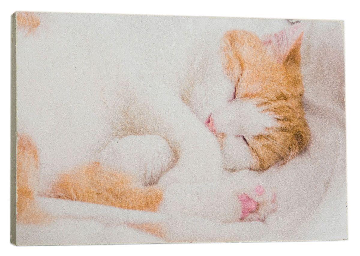 Картина Киса спит, 14,5 х 22 см0120-15-22