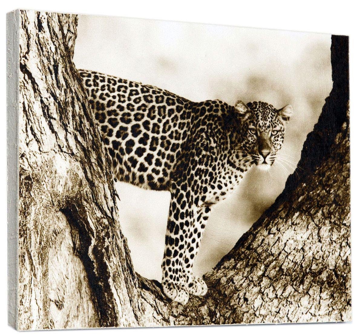 Картина Mister Poster Ягуар на дереве, 30 х 24 см0149-24-30Картина Mister Poster - это высококачественная репродукция на деревянной раме. Лицевая поверхность имитирует штукатурку или натуральный холст, края окрашены вручную специальным декоративным составом.Современные технологии, уникальное оборудование и оригинальные чернила, используемые при изготовлении, делают постер устойчивым к выцветанию, а также гарантируют стойкость к воздействию негативных внешних факторов. Интерьер дома и офиса, в котором находится человек, в значительной степени влияет на его настроение и работоспособность. Правильное оформление интерьера создает благоприятный психологический климат, улучшает настроение и мотивирует. Добавьте «красок» в ваш интерьер и, возможно, в вашу жизнь.