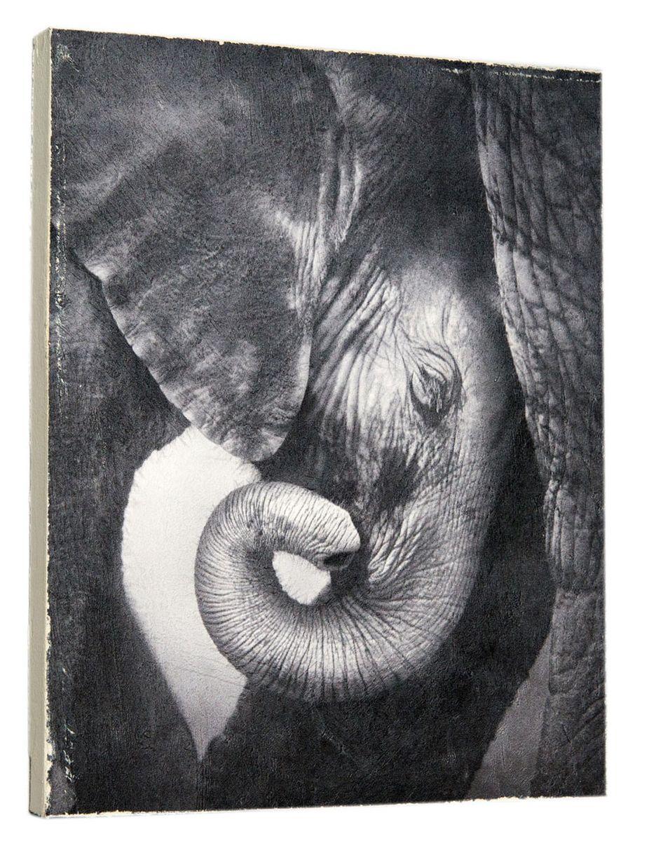 Картина Слоненок , 24 х 30 см0151-24-30
