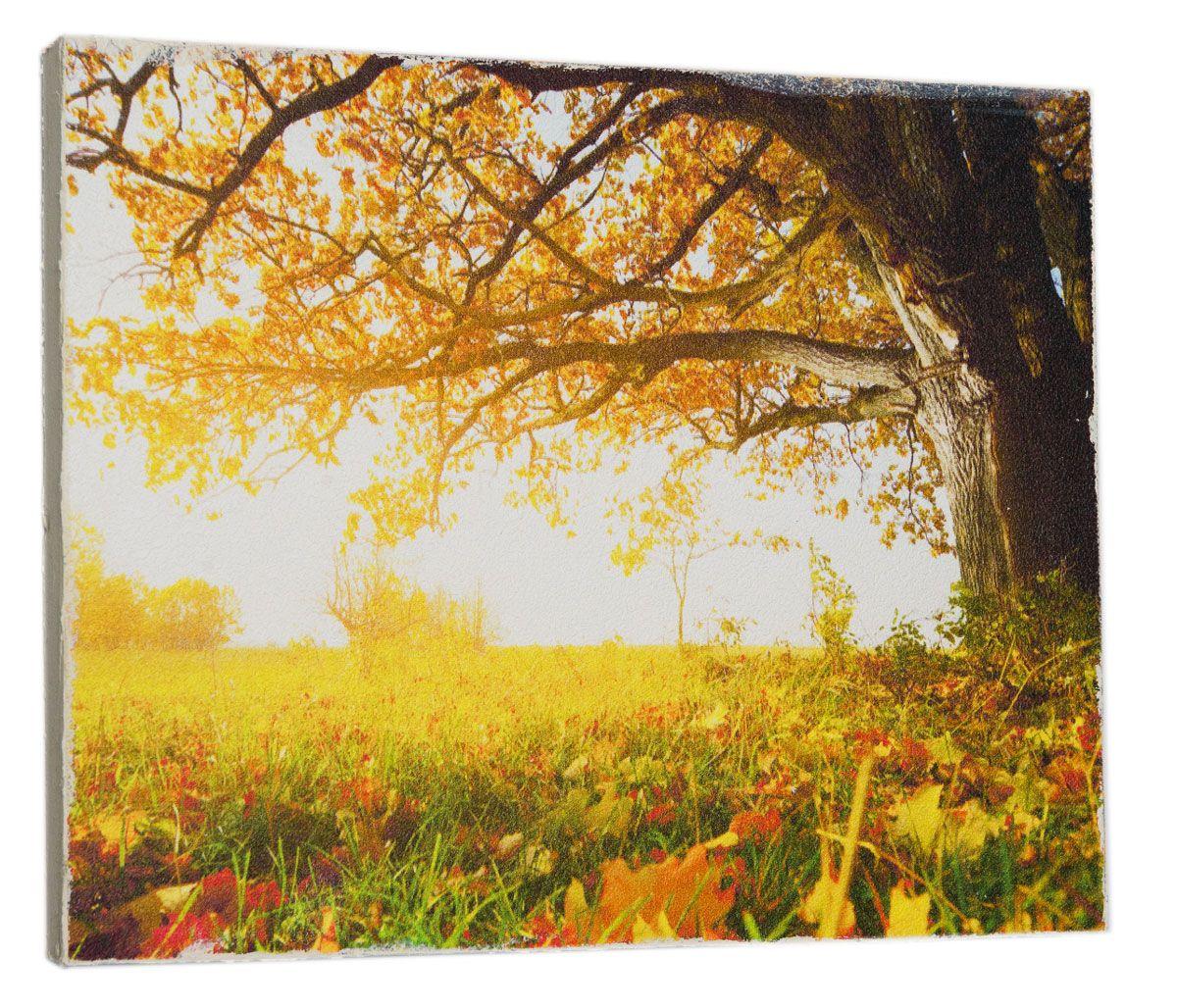 Картина Mister Poster Осеннее опавшее дерево, 32 х 24 см0313-24-32Картина Mister Poster - это высококачественная репродукция на деревянной раме. Лицевая поверхность имитирует штукатурку или натуральный холст, края окрашены вручную специальным декоративным составом.Современные технологии, уникальное оборудование и оригинальные чернила, используемые при изготовлении, делают постер устойчивым к выцветанию, а также гарантируют стойкость к воздействию негативных внешних факторов. Интерьер дома и офиса, в котором находится человек, в значительной степени влияет на его настроение и работоспособность. Правильное оформление интерьера создает благоприятный психологический климат, улучшает настроение и мотивирует. Добавьте «красок» в ваш интерьер и, возможно, в вашу жизнь.