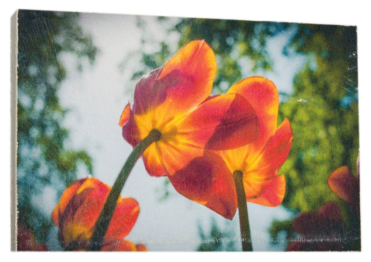 Картина Mister Poster Солнечные яркие тюльпаны, 22 х 14,5 см0410-15-22Картина Mister Poster - это высококачественная репродукция на деревянной раме. Лицевая поверхность имитирует штукатурку или натуральный холст, края окрашены вручную специальным декоративным составом.Современные технологии, уникальное оборудование и оригинальные чернила, используемые при изготовлении, делают постер устойчивым к выцветанию, а также гарантируют стойкость к воздействию негативных внешних факторов. Интерьер дома и офиса, в котором находится человек, в значительной степени влияет на его настроение и работоспособность. Правильное оформление интерьера создает благоприятный психологический климат, улучшает настроение и мотивирует. Добавьте «красок» в ваш интерьер и, возможно, в вашу жизнь.