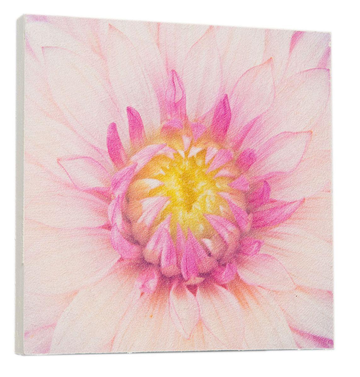 Картина Mister Poster Розовый лотос, 22 х 22 см картина mister poster розовые цветы вишни 22 х 14 5 см