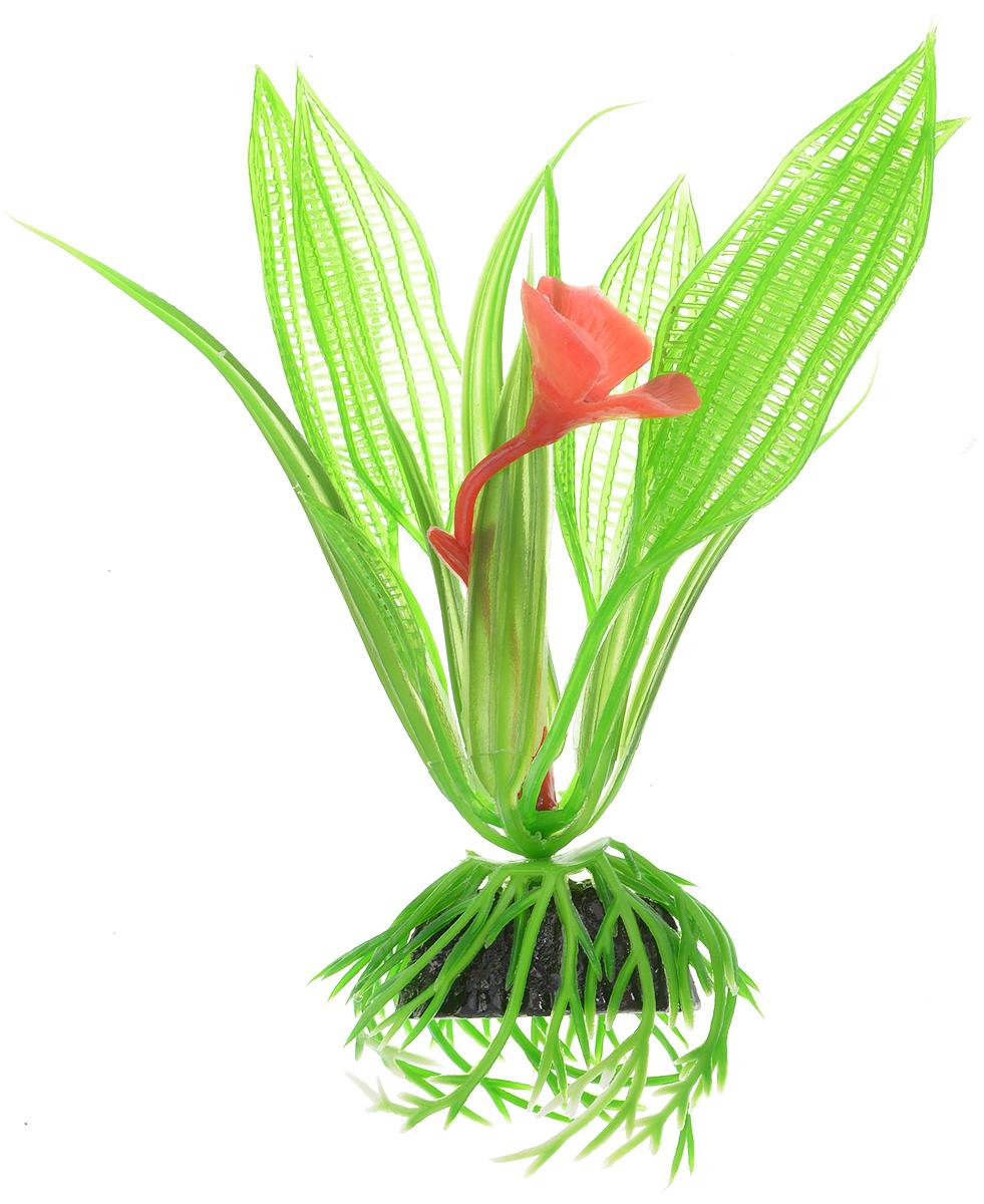 Растение для аквариума Barbus Апоногетон Мадагаскарский с цветком, пластиковое, высота 10 смPlant 023/10Растение для аквариума Barbus Апоногетон Мадагаскарский с цветком, выполненное из качественного пластика, станет оригинальным украшением вашего аквариума. Пластиковое растение идеально подходит для дизайна всех видов аквариумов. Оно абсолютно безопасно, не токсично, нейтрально к водному балансу, устойчиво к истиранию краски, подходит как для пресноводного, так и для морского аквариума. Растение для аквариума Barbus поможет вам смоделировать потрясающий пейзаж на дне вашего аквариума или террариума. Высота растения: 10 см.