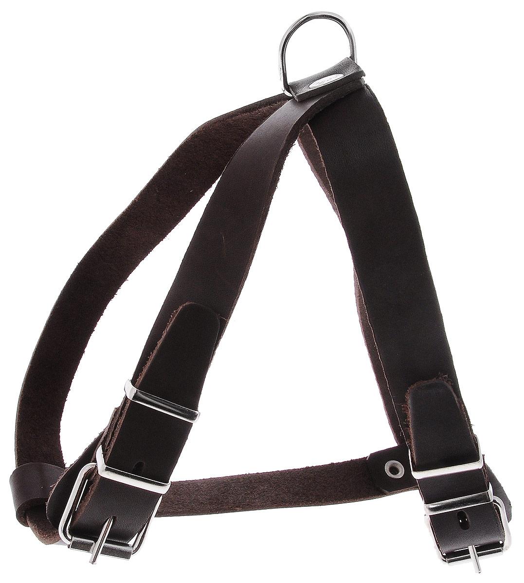 """Шлейка для собак Каскад """"Классика"""", цвет: темно-коричневый, ширина 2,5 см, обхват груди: 59-67 см"""