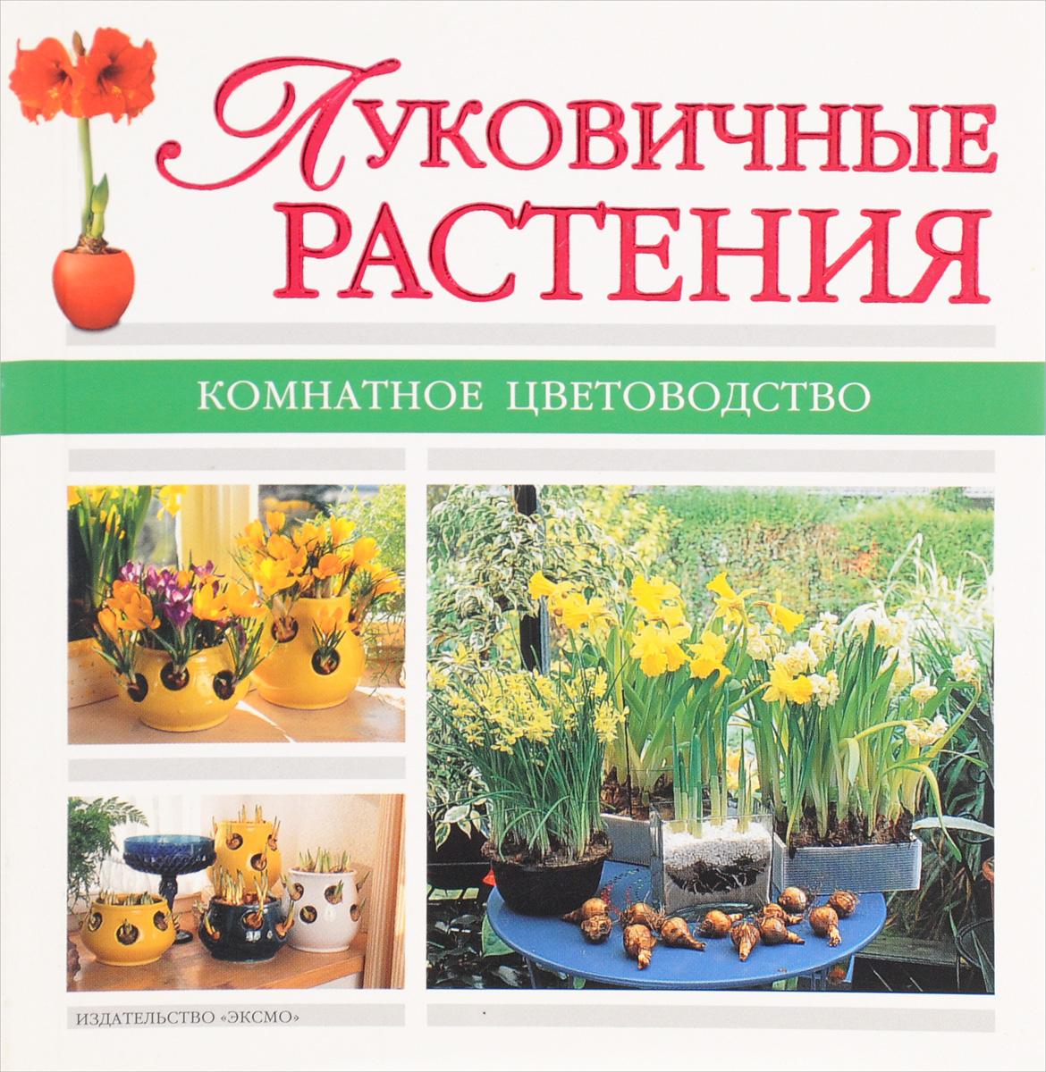 А. Лимаренко, Т. Палеева Луковичные растения