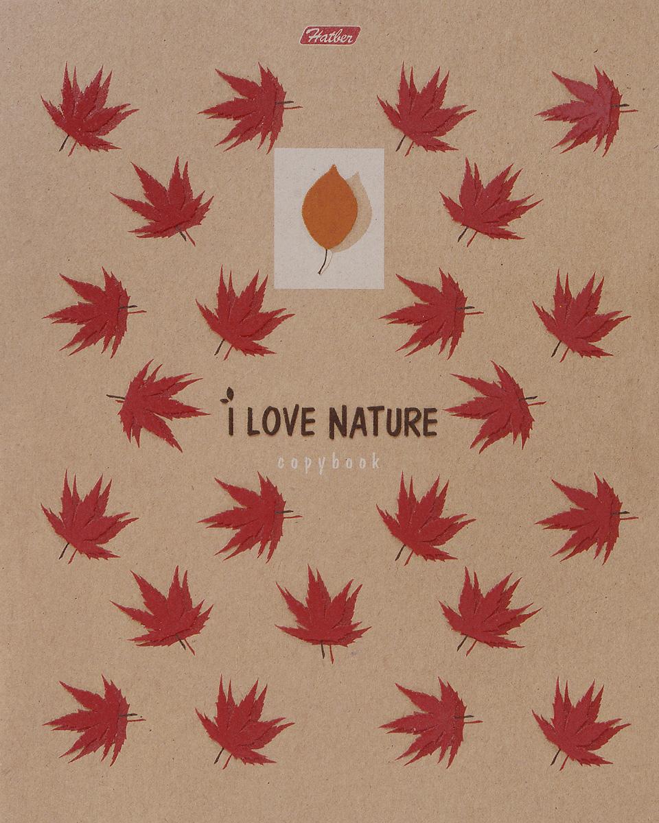 Hatber Тетрадь Кленовый лист 48 листов в клетку цвет волос кленовый фото