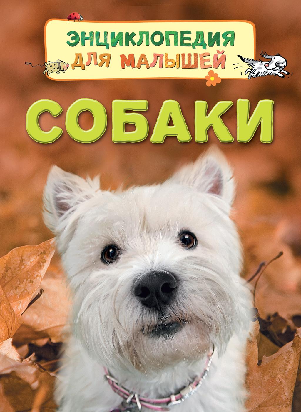 Собаки развивающие книжки росмэн книга собаки и щенки 100 фактов