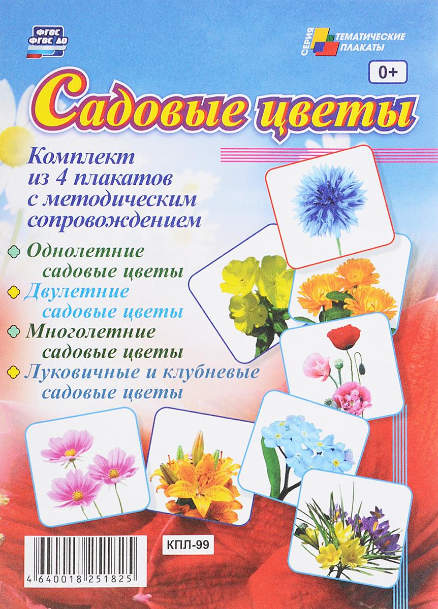 Садовые цветы (комплект из 4 плакатов) лейки садовые ведра