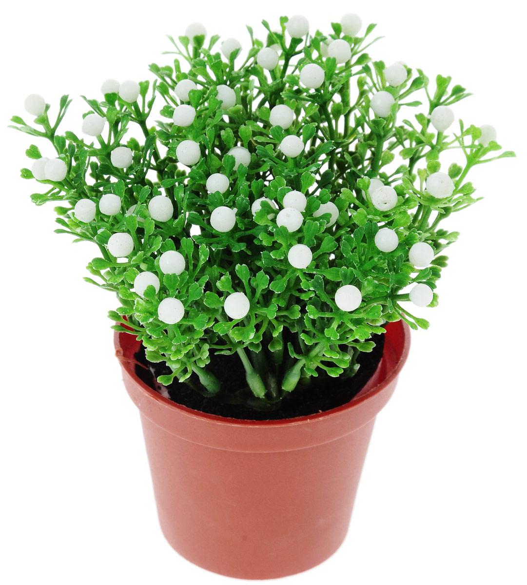 Растение искусственное для мини-сада Bloom`its, высота 14,8 см804833_зеленый, белыйИскусственное растение Bloom`its поможет создать свой собственный мини-сад. Заниматься ландшафтным дизайном и декором теперь можно, даже если у вас нет своего загородного дома, причем не выходя из дома. Устройте себе удовольствие садовода, собирая миниатюрные фигурки и составляя из них различные композиции. Объедините миниатюрные изделия в емкости (керамический горшок, корзина, деревянный ящик или стеклянная посуда) и добавьте мини-растения. Это не только поможет увлекательно провести время, раскрывая ваше воображение и фантазию, результат работы станет стильным и необычным украшением интерьера.