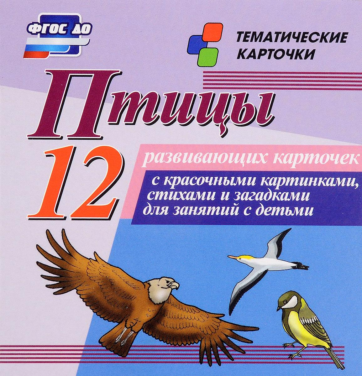 Птицы (набор из 12 развивающих карточек)