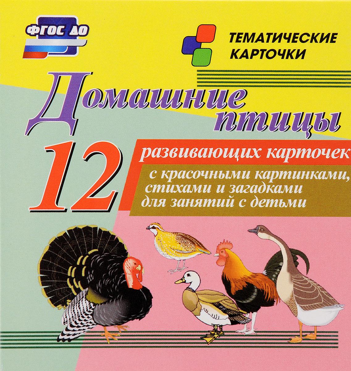 Домашние птицы (набор из 12 развивающих карточек)