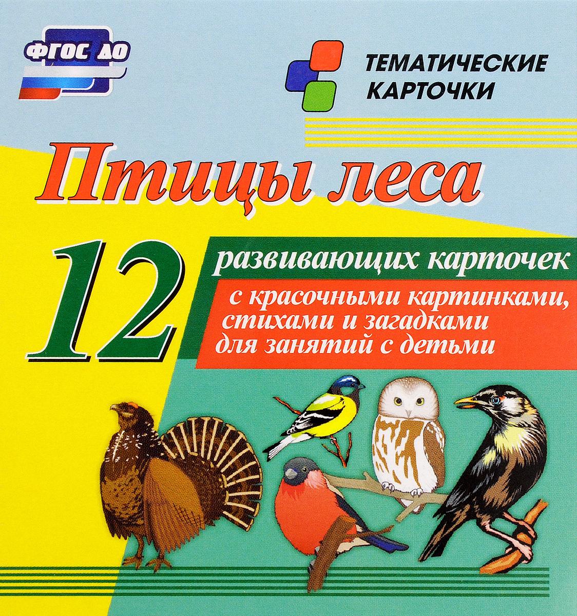 Птицы леса (12 развивающих карточек)