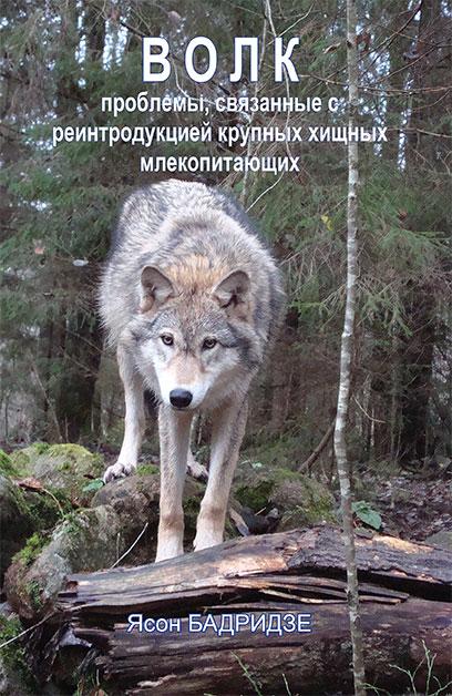 Ясон Бадридзе Волк. Проблемы, связанные с реинтродукцией крупных хищных млекопитающих цена 2017