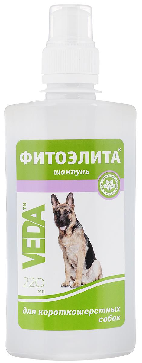 Шампунь для короткошерстных собак VEDA Фитоэлита, 220 мл4605543006036Шампунь VEDA Фитоэлита - это эффективное средство гигиены для домашних животных наоснове листьев крапивы. Формула этого шампуня разработана с учетом структуры шерсти собак короткошерстных пород, что позволяет добиться прекрасных результатов при регулярномиспользовании. Товар сертифицирован.