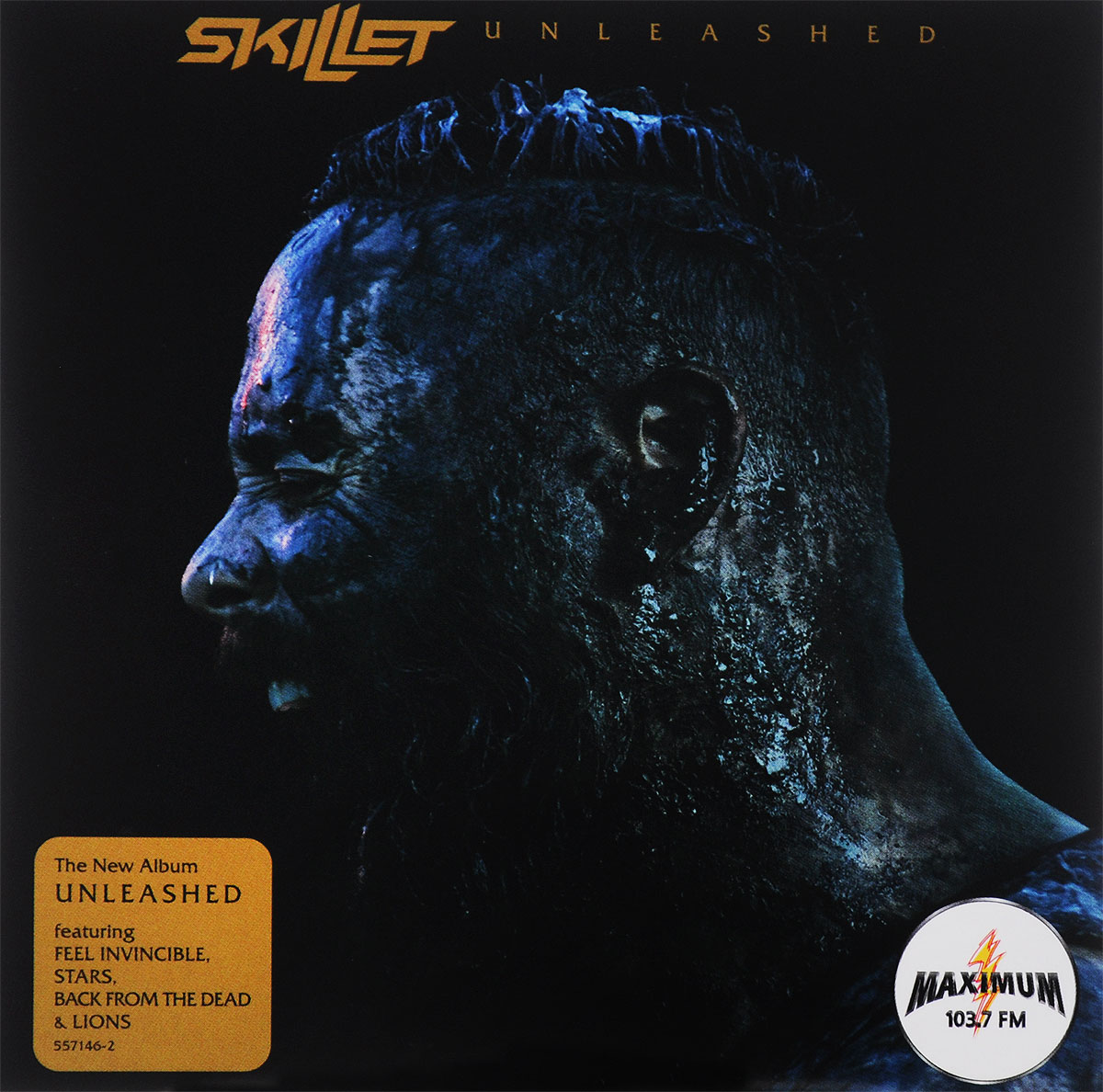 Skillet Skillet. Unleashed english with crosswords 3 dvdrom