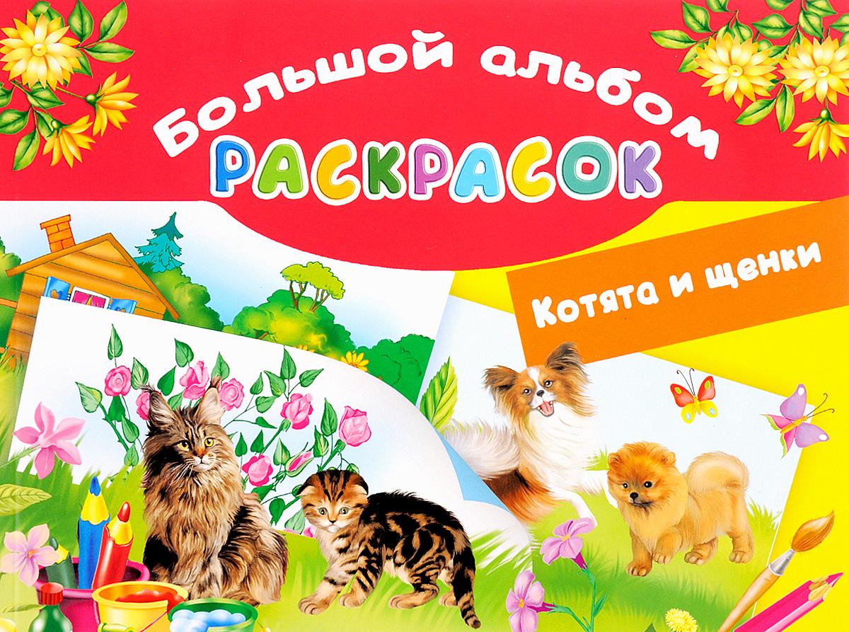 Котята и щенки play doh игровой набор магазинчик домашних питомцев