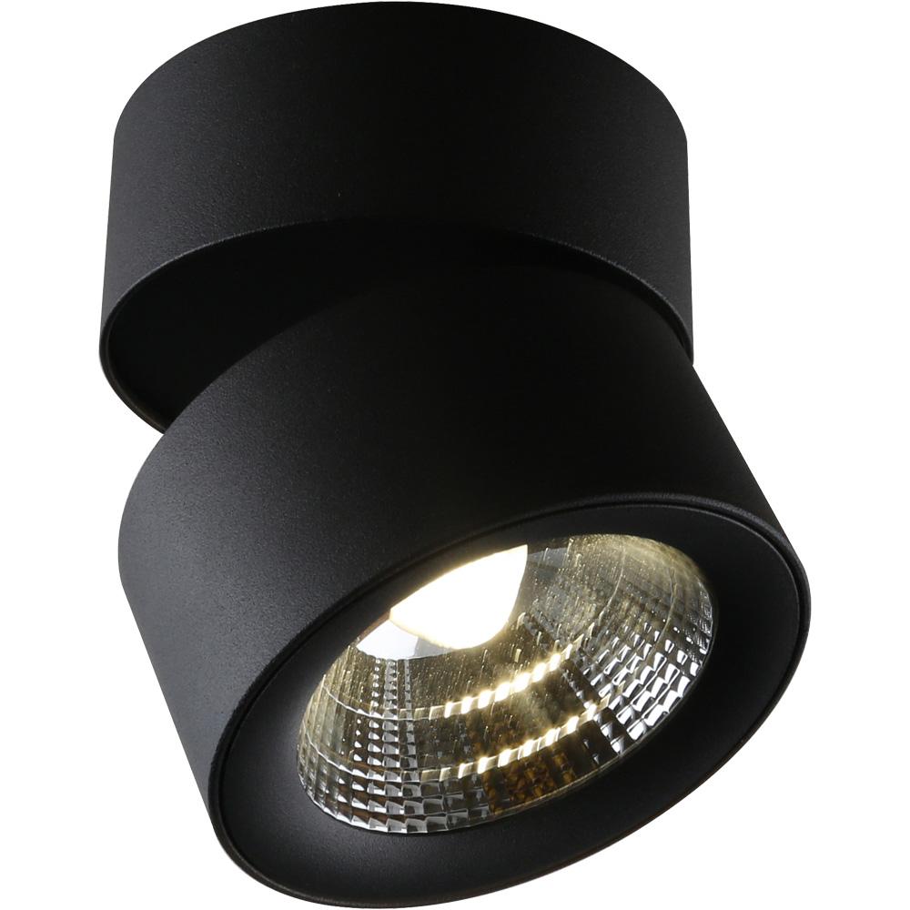 Светильник потолочный Divinare Urchin 1295/04 PL-1 divinare urchin 1295 03 pl 1