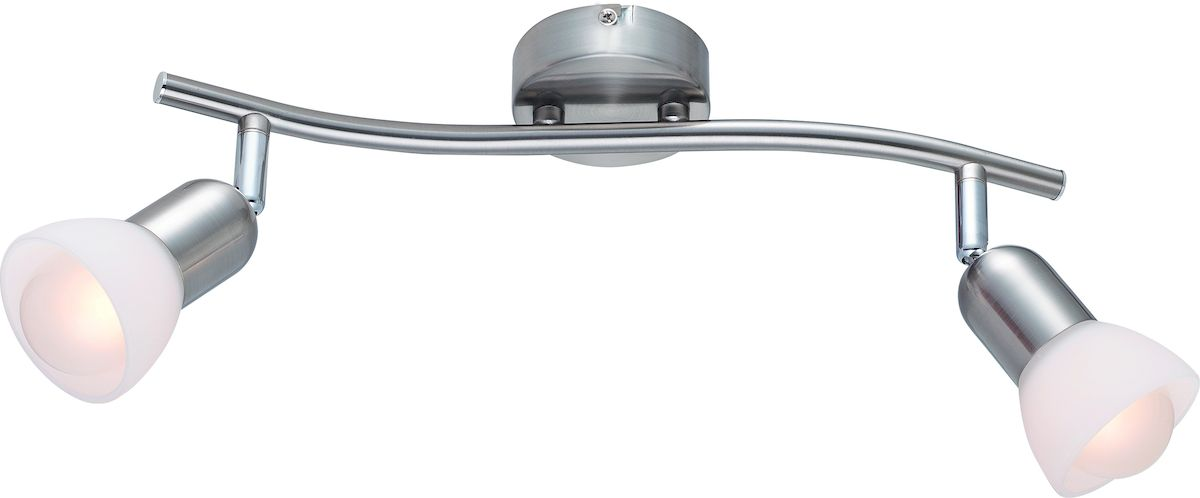 Светильник потолочный Arte Lamp FALENA A3115PL-2SSA3115PL-2SS