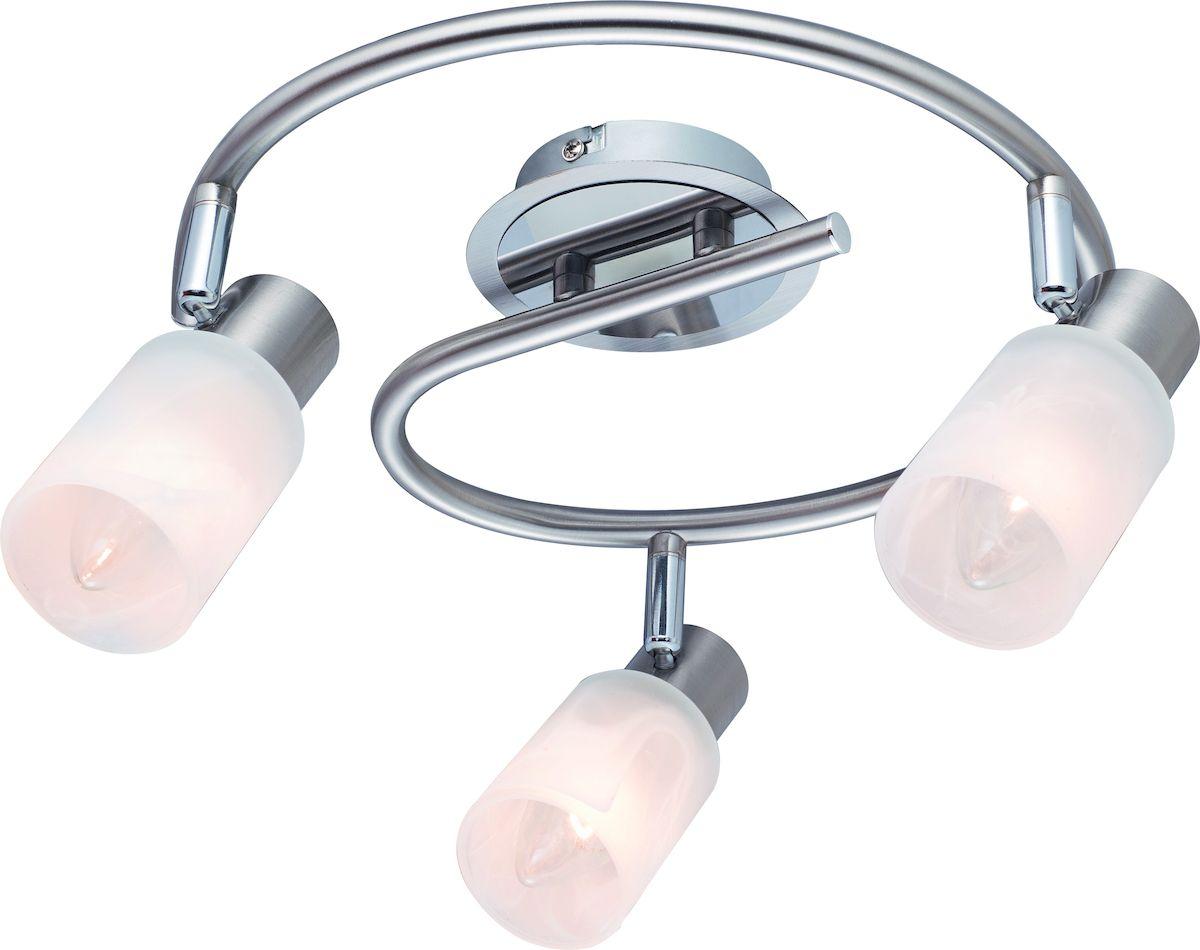 Светильник потолочный Arte Lamp  Cavalletta  A4510PL-3SS -  Светильники