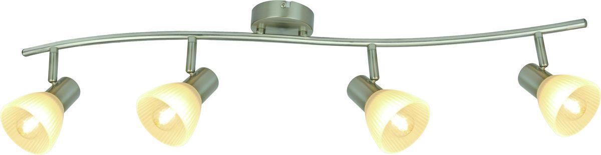 Светильник потолочный Arte Lamp Parry A5062PL-4SS arte lamp спот arte lamp parry a5062pl 4ss