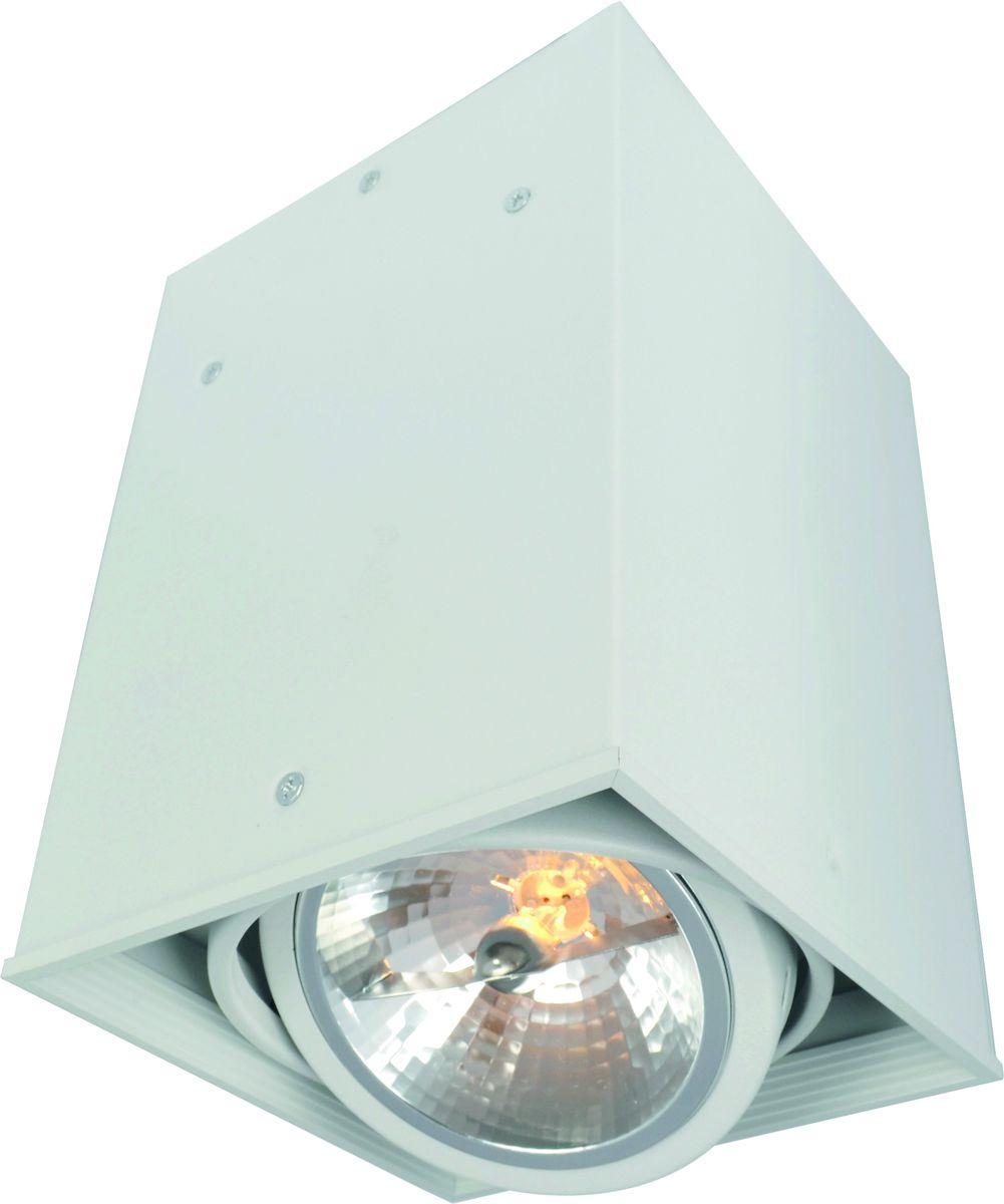 Светильник потолочный Arte Lamp CARDANI A5936PL-1WH