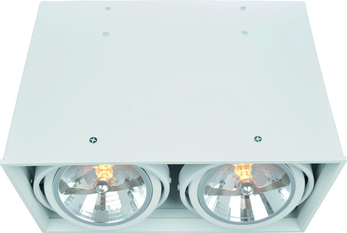 Светильник потолочный Arte Lamp CARDANI A5936PL-2WH накладной светильник arte lamp cardani a5936pl 2wh