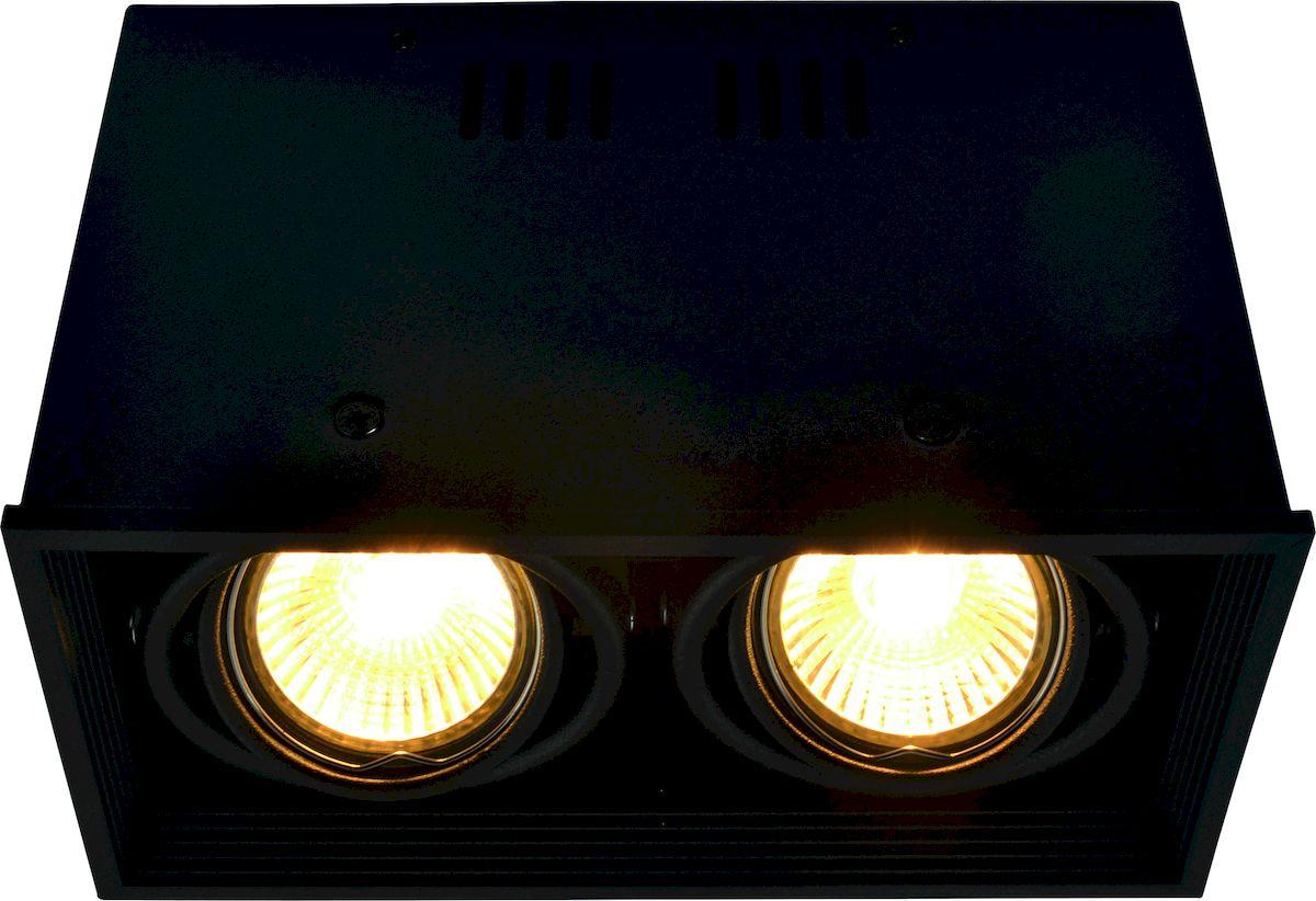 Светильник потолочный Arte Lamp CARDANI A5942PL-2BK накладной светильник arte lamp cardani a5942pl 3wh