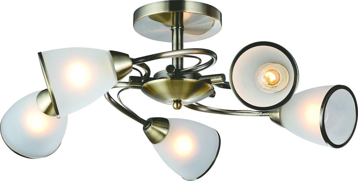 Светильник потолочный Arte Lamp INNOCENTE A6056PL-5AB