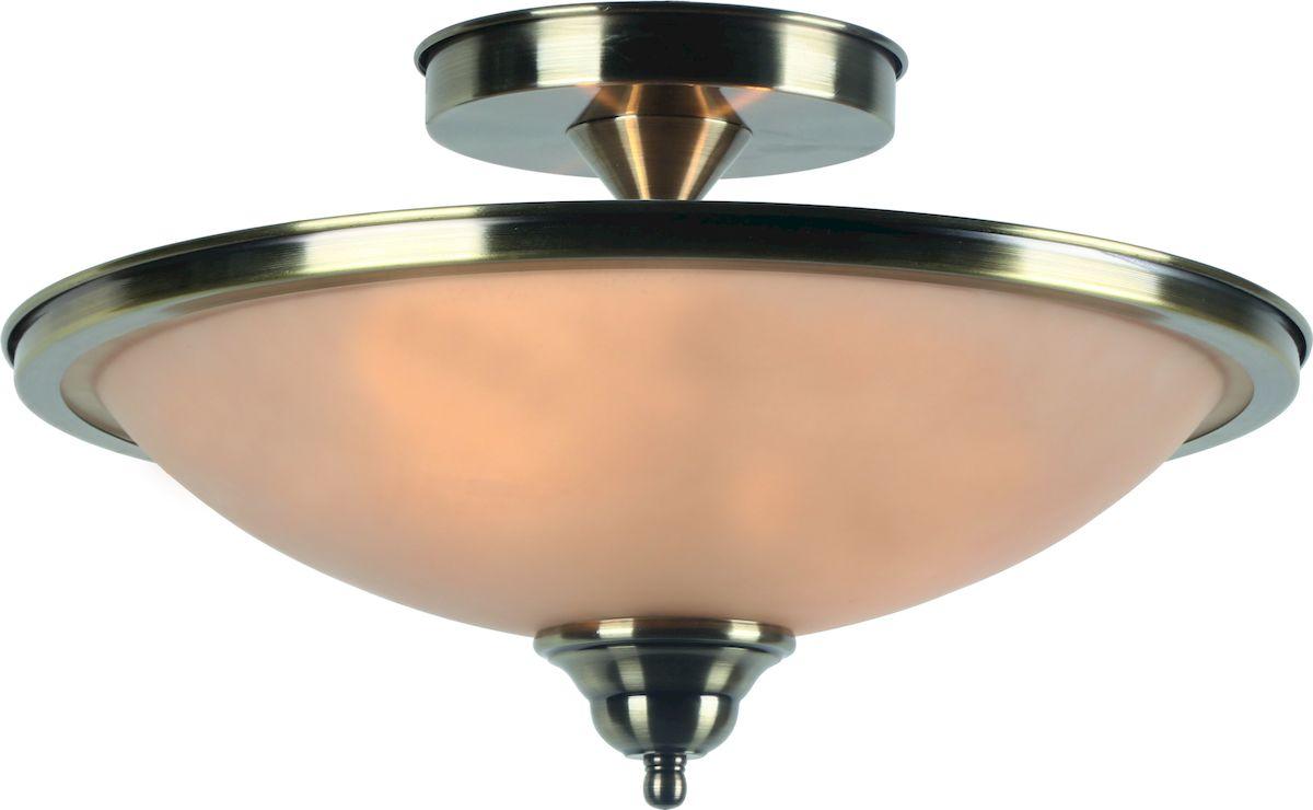 Светильник потолочный Arte Lamp Safari A6905PL-2AB