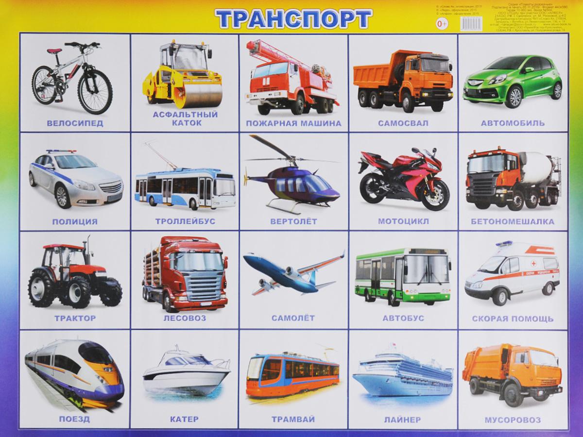 Алфея Обучающий плакат Транспорт издательство алфея комплект веселые глазки 2 7 видов
