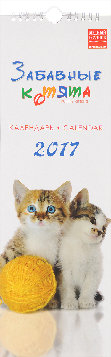 Календарь 2017 (на спирали). Забавные котята / Funny Kittens календарь на 2017 год на спирали retro nostalgia ретро 450 315мм