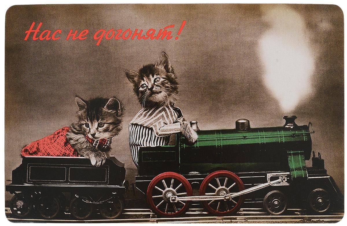 Открытка поздравительная в винтажном стиле №323. Авторская работаОТКР №323Оригинальная поздравительная открытка выполнена из плотного картона. На лицевой стороне расположено красочное изображение двух котят, которые едут на паровозе. Необычная и яркая открытка в винтажном стиле поможет вам выразить чувства и передать теплые поздравления.Такая открытка станет великолепным дополнением к подарку или оригинальным почтовым посланием, которое, несомненно, удивит получателя своим дизайном и подарит приятные воспоминания.