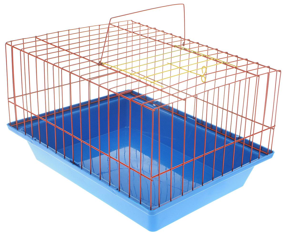 Клетка для морской свинки  ЗооМарк , цвет: синий поддон, красная решетка, 41 х 30 х 25 см - Клетки, вольеры, будки
