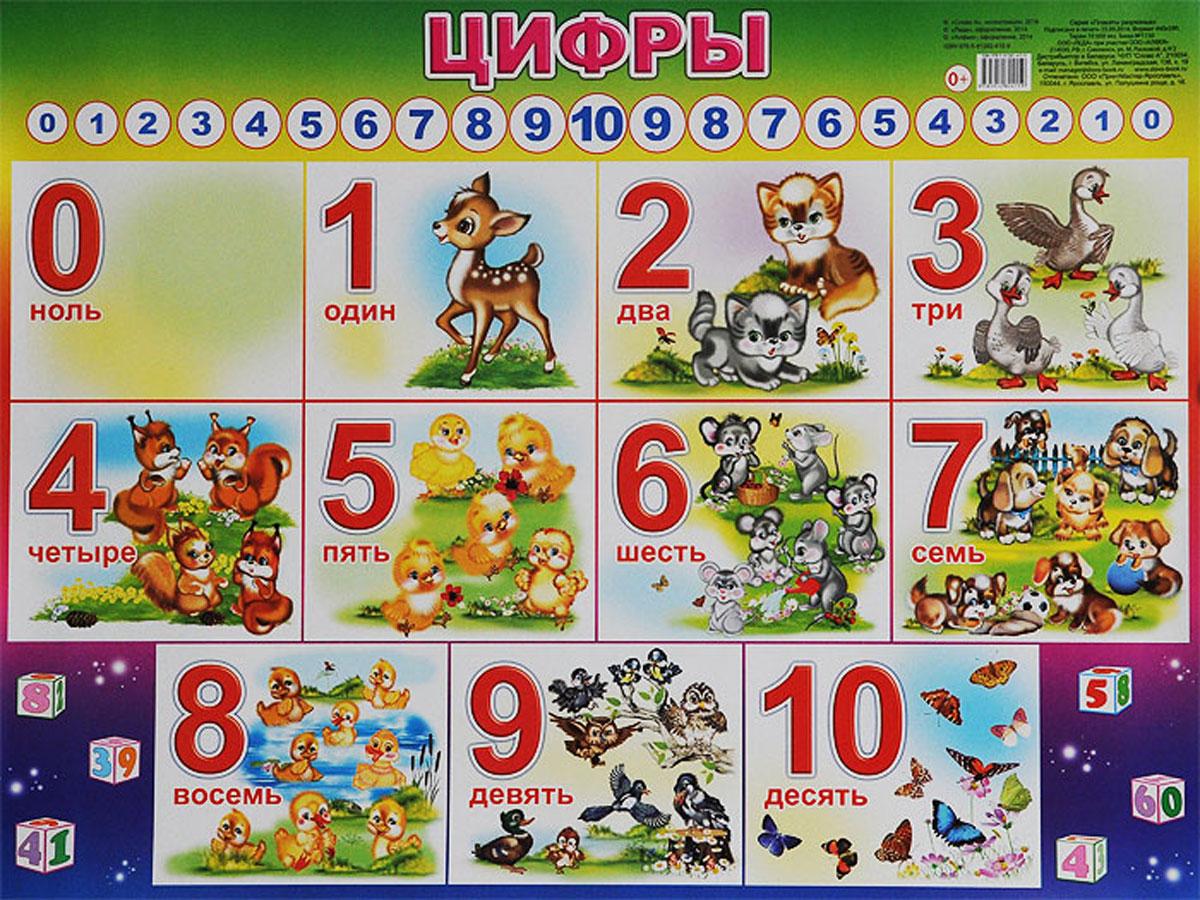 Алфея Обучающий плакат Цифры алфея обучающий плакат малый таблица умножения