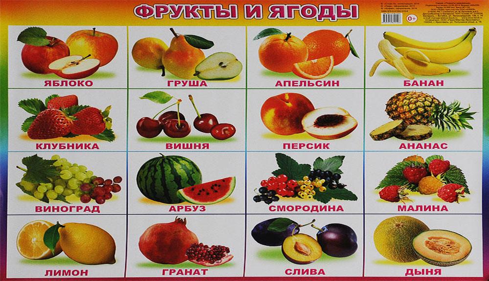 Алфея Обучающий плакат Фрукты и ягоды обучающие плакаты алфея плакат природные явления