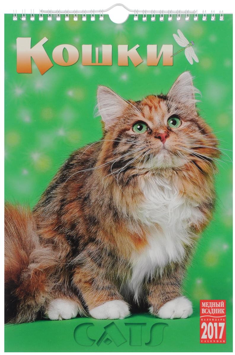 Календарь 2017 (на спирали). Кошки / Cats ISBN: КР21-17021 календарь на 2017 год на спирали retro nostalgia ретро 450 315мм