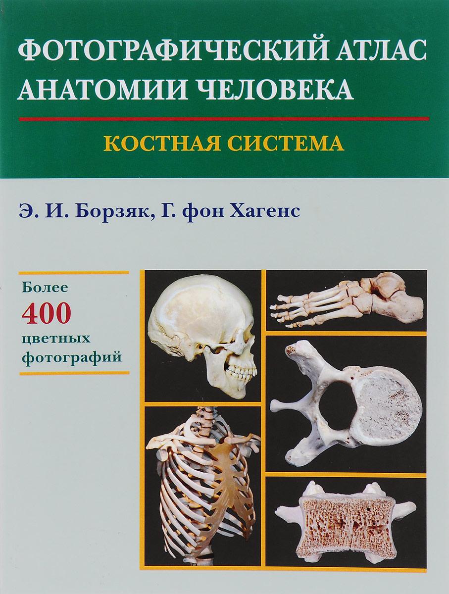 Э. И. Борзяк, Г. фон Хагенс Фотографический атлас анатомии человека. Костная система винсент перез большой атлас анатомии человека
