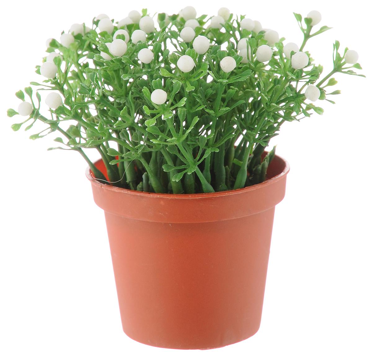 Растение искусственное для мини-сада Bloom`its, высота 13 см. 80483804833_коричневый/зеленый/белыйИскусственное растение Bloom`its поможет создатьсвой собственный мини-сад. Заниматься ландшафтнымдизайном и декором теперь можно, даже если у вас нетсвоего загородного дома, причем не выходя из дома.Устройте себе удовольствие садовода, собираяминиатюрные фигурки и составляя из них различныекомпозиции. Объедините миниатюрные изделия в емкости(керамический горшок, корзина, деревянный ящик илистеклянная посуда) и добавьте мини-растения. Это поможет увлекательно провести время,раскроет ваше воображение и фантазию, а результатработы станет стильным и необычным украшениеминтерьера.Высота растения: 13 см. Диаметр растения: 11 см.