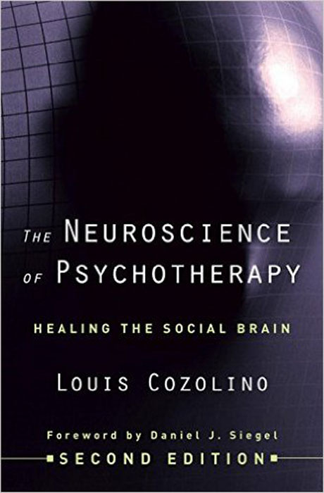 The Neuroscience of Psychotherapy – Healing the Social Brain 2e f flach psychotherapy