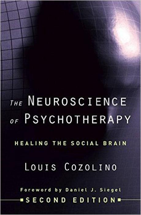 The Neuroscience of Psychotherapy – Healing the Social Brain 2e evolutionary neuroscience