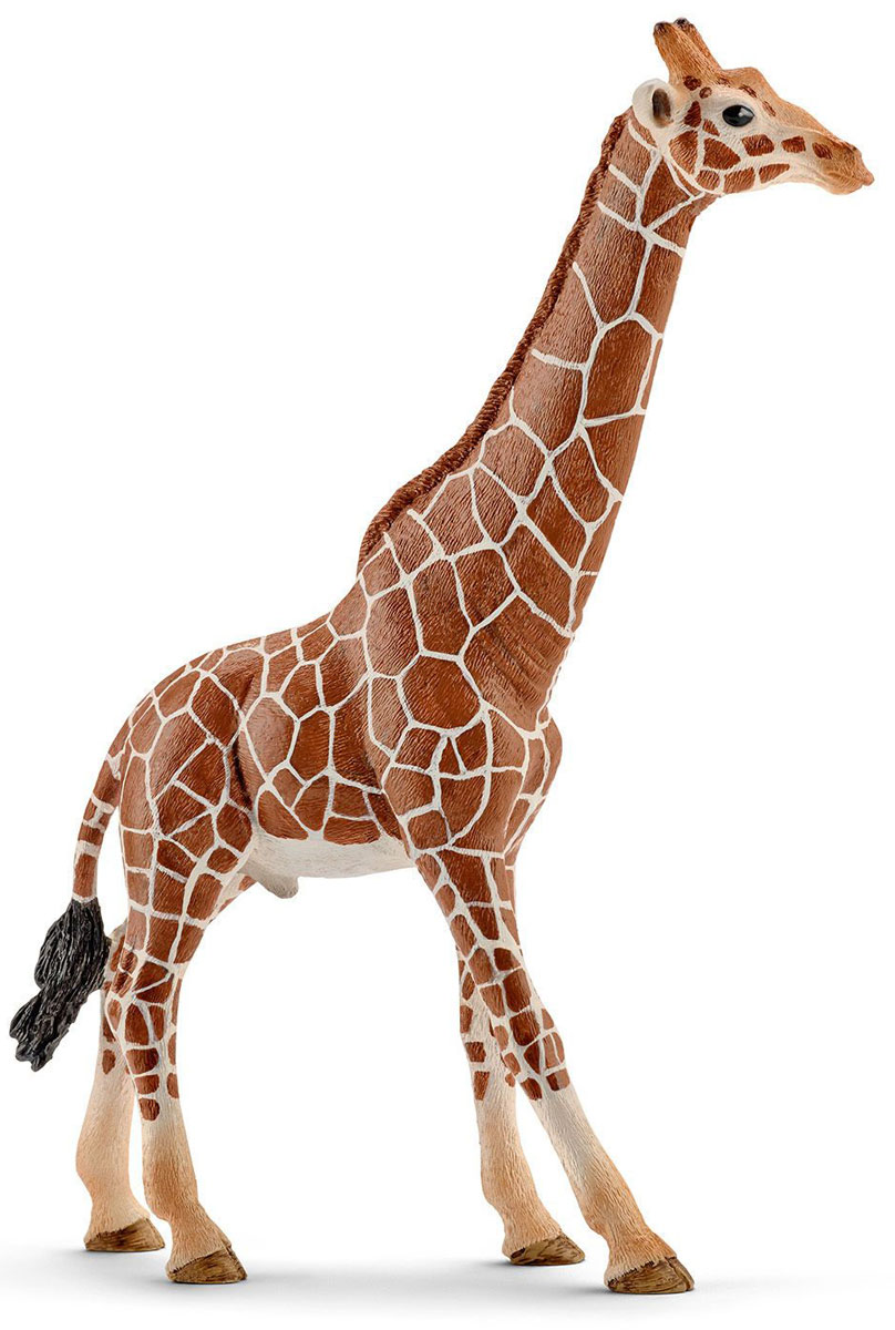 Schleich Фигурка Жираф самец фигурки игрушки schleich жираф самка