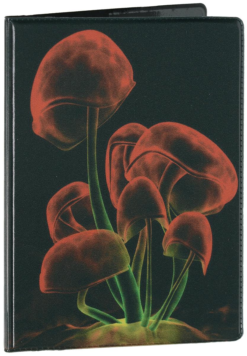 Обложка для паспорта Эврика Грибы, цвет: темно-зеленый, красный. 94488ПВХ (поливинилхлорид)Оригинальная обложка для паспорта Эврика понравится вам с первого взгляда. Она изготовлена из качественного ПВХ и оформленаоригинальным принтом. Внутри расположены прозрачные карманы для фиксации паспорта. Такая обложка не только поможет сохранить внешний вид вашего паспорта и защитить его от повреждений, но и станет стильным аксессуаром.
