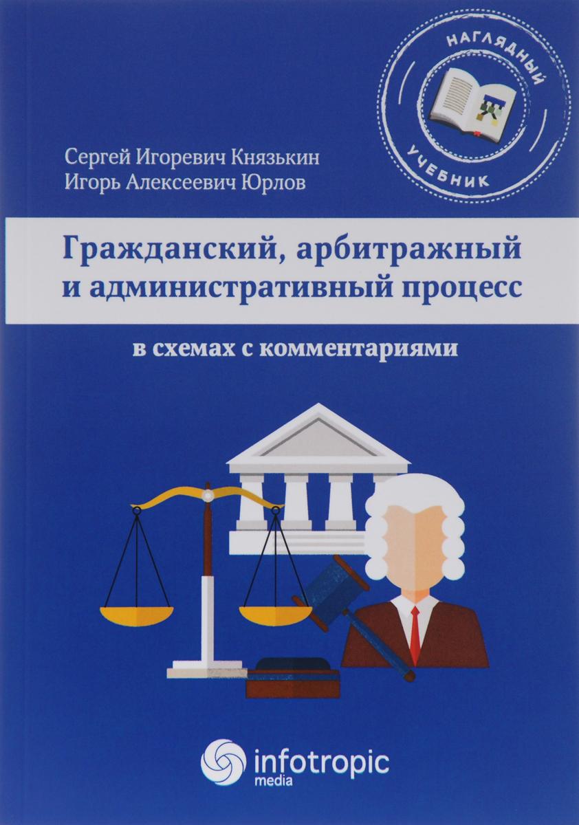 Гражданский, арбитражный и административный процесс в схемах с комментариями