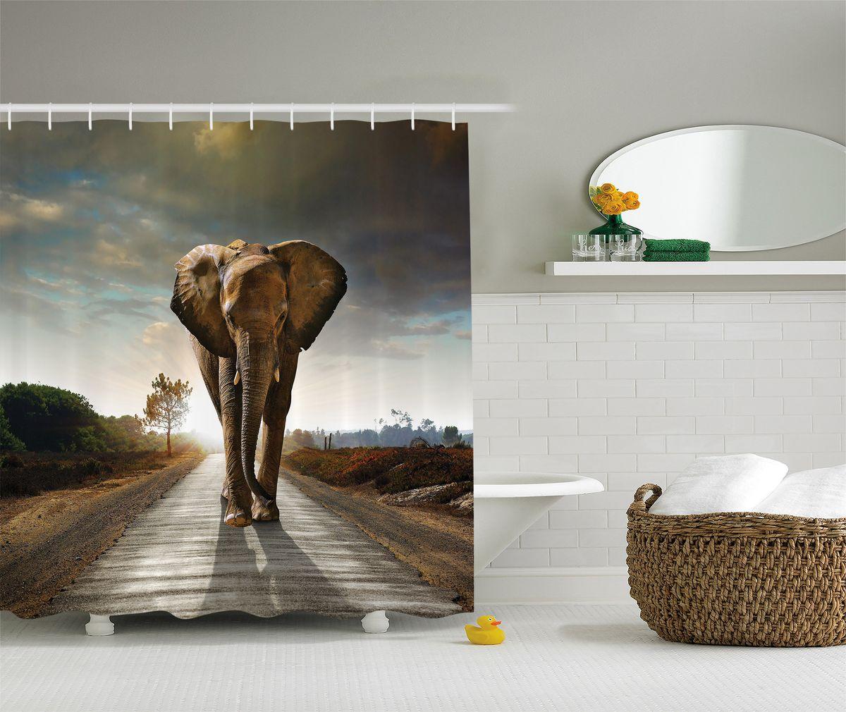 """Штора Magic Lady """"Слон на пустынной дороге"""", изготовленная из высококачественного сатена (полиэстер 100%), отлично дополнит любой интерьер ванной комнаты. При изготовлении используются специальные гипоаллергенные чернила для прямой печати по ткани, безопасные для человека.    В комплекте: 1 штора, 12 крючков. Обращаем ваше внимание, фактический цвет изделия может незначительно отличаться от представленного на фото."""
