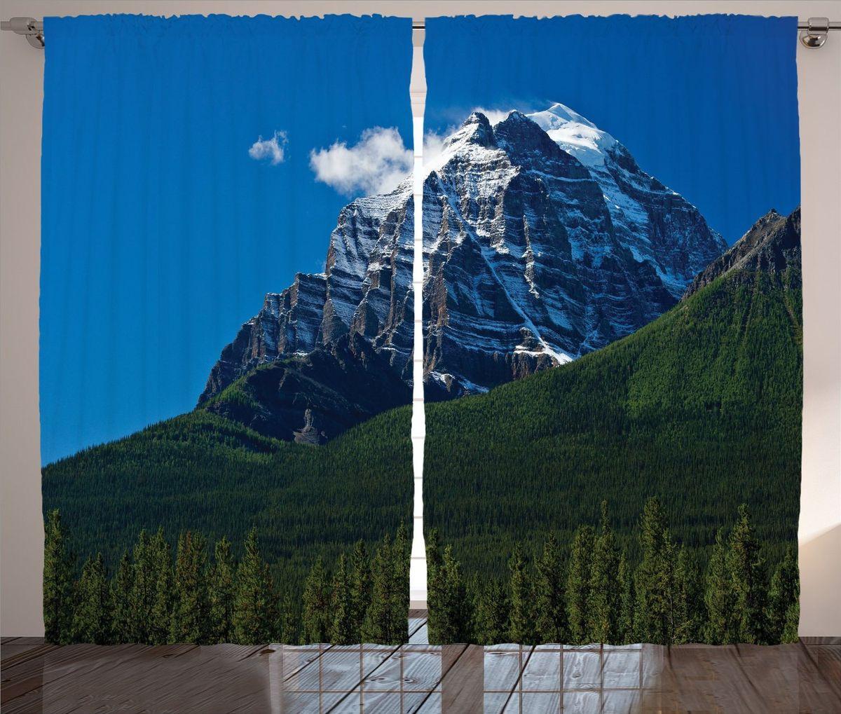 Комплект фотоштор Magic Lady Заснеженная гора, на ленте, высота 265 см фотошторы magic lady плотные фотошторы две хамсы 290 265 см
