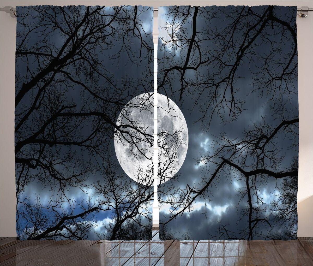 Комплект фотоштор Magic Lady Луна среди ветвей, на ленте, цвет: черный, белый, высота 265 смшсг_15748Компания Сэмболь изготавливает шторы из высококачественного сатена (полиэстер 100%). При изготовлении используются специальные гипоаллергенные чернила для прямой печати по ткани, безопасные для человека и животных. Экологичность фотоштор Magic Lady Луна среди ветвей и безопасность для окружающей среды подтверждены сертификатом Oeko-Tex Standard 100. Крепление: крючки для крепления на шторной ленте (50 шт.). Возможно крепление на трубу. Внимание! При нанесении сублимационной печати на ткань технологическим методом при температуре 240 С, возможно отклонение полученных размеров (указанных на этикетке и сайте) от стандартных на + - 3- 5 см. Мы стараемся максимально точно передать цвета изделия на наших фотографиях, однако искажения неизбежны и фактический цвет изделия может отличаться от воспринимаемого по фото. Обратите внимание! Шторы изготовлены из полиэстра сатенового переплетения, а не из сатина (хлопок). Размер одного полотна шторы: 145 х 265 см.