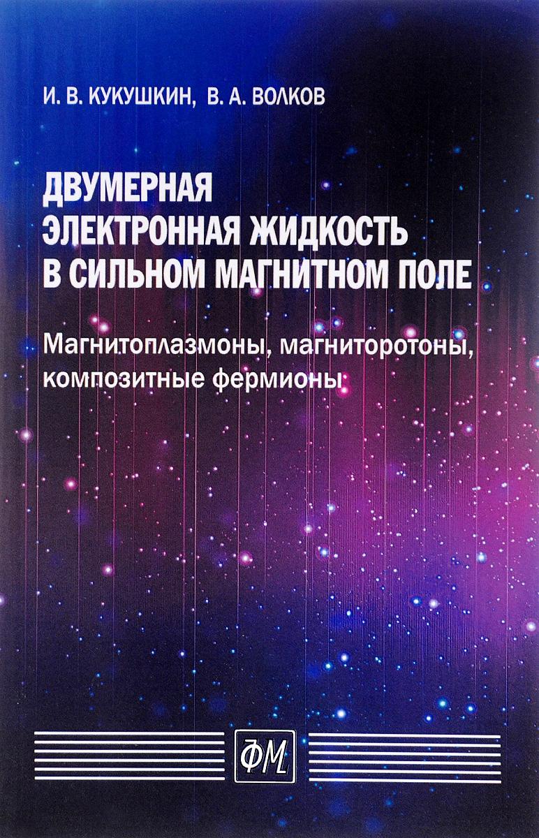 И. В. Кукушкин, В. А. Волков. Двумерная электронная жидкость в сильном магнитном поле. Магнитоплазмоны, магниторотоны, композитные фермионы